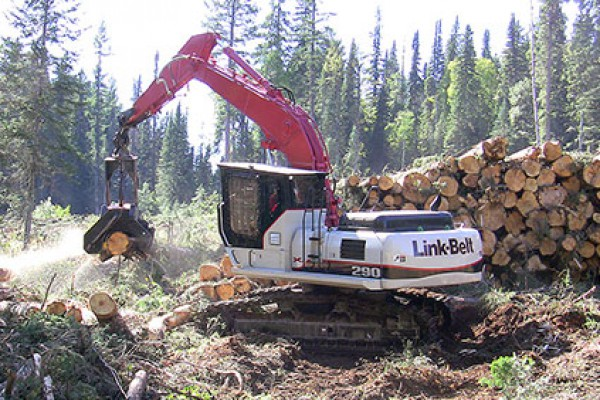 Link-Belt Excavators | X2 Forestry Series | Model 290 X2 Processor for sale at Cisco Equipment, Texas and New Mexico